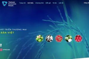 Giao diện chuyên trang Diễn đàn Kinh tế Việt Nam.